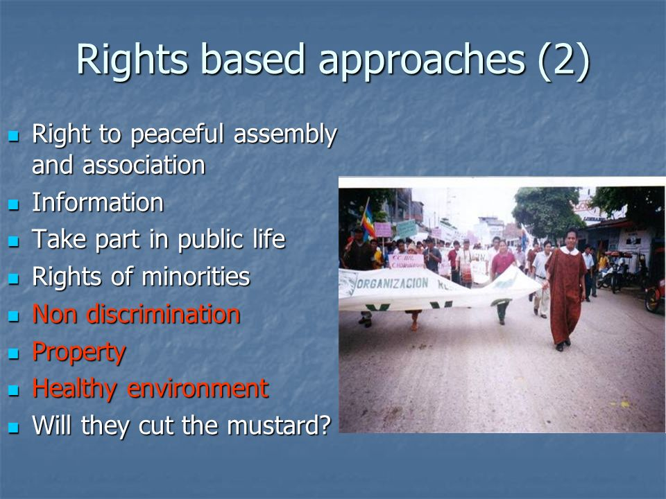 Rights based approaches (2) Right to peaceful assembly and association Right to peaceful assembly and association Information Information Take part in public life Take part in public life Rights of minorities Rights of minorities Non discrimination Non discrimination Property Property Healthy environment Healthy environment Will they cut the mustard.
