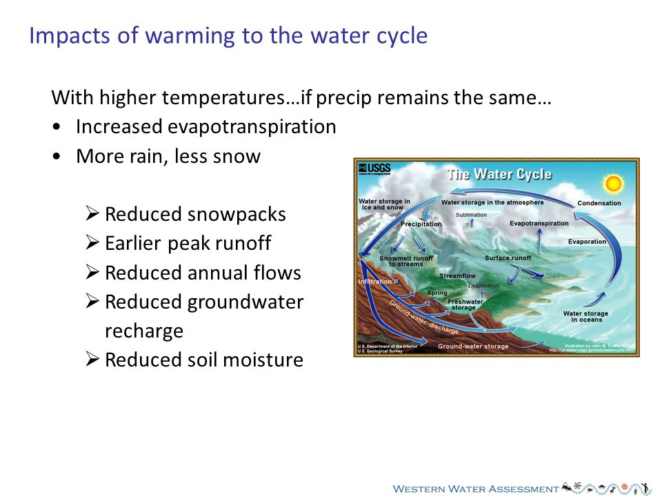 With higher temperatures…if precip remains the same… Increased evapotranspiration More rain, less snow Reduced snowpacks Earlier peak runoff Reduced annual flows Reduced groundwater recharge Reduced soil moisture Impacts of warming to the water cycle