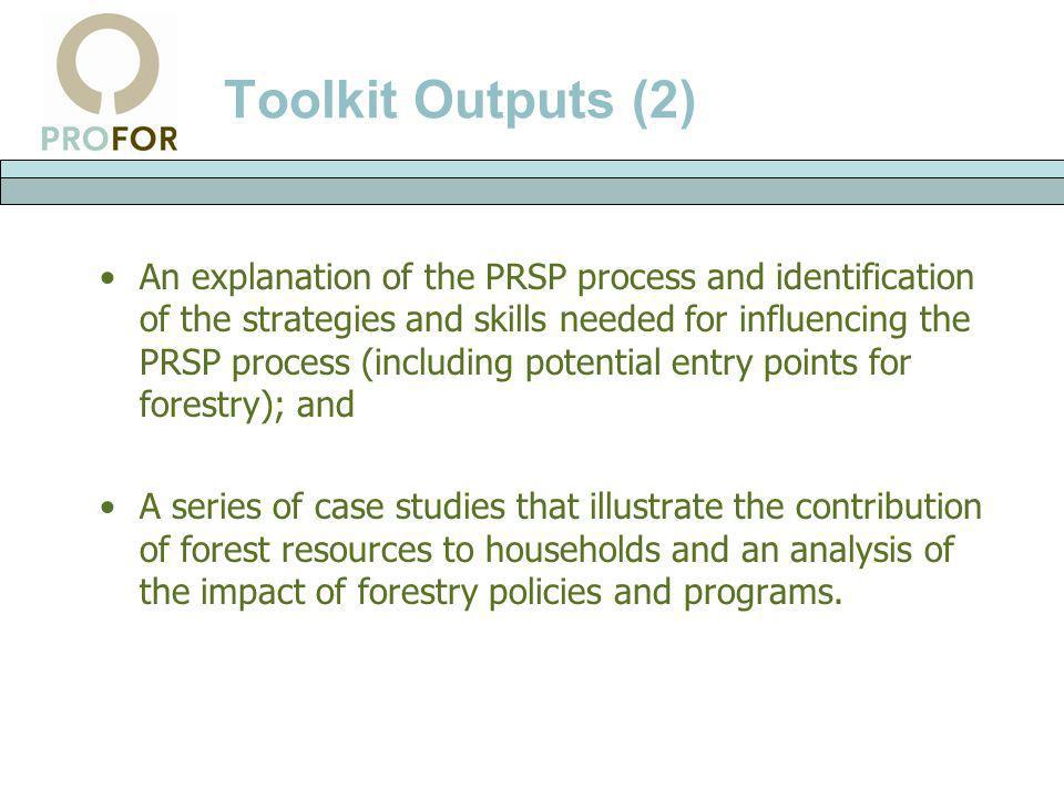 Toolkit Outputs (2) An explanation of the PRSP process and identification of the strategies and skills needed for influencing the PRSP process (includ