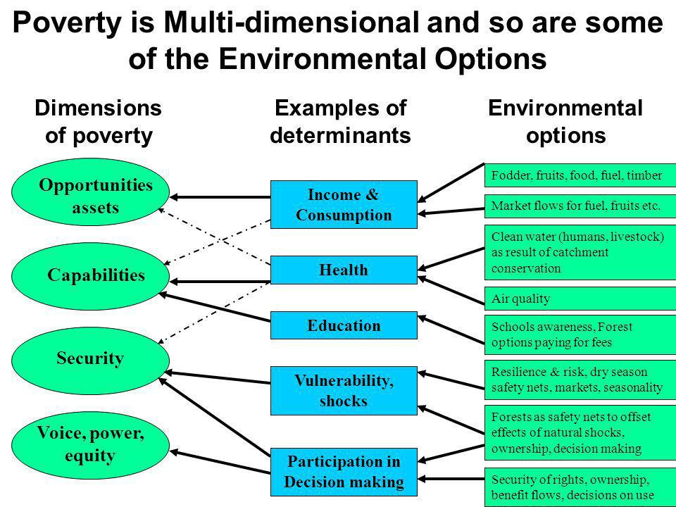 Income & Consumption Health Education Vulnerability, shocks Participation in Decision making Opportunities assets Capabilities Security Voice, power,