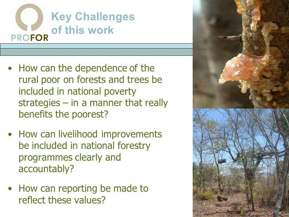 Key Challenges of this work How can the dependence of the rural poor on forests and trees be included in national poverty strategies – in a manner tha