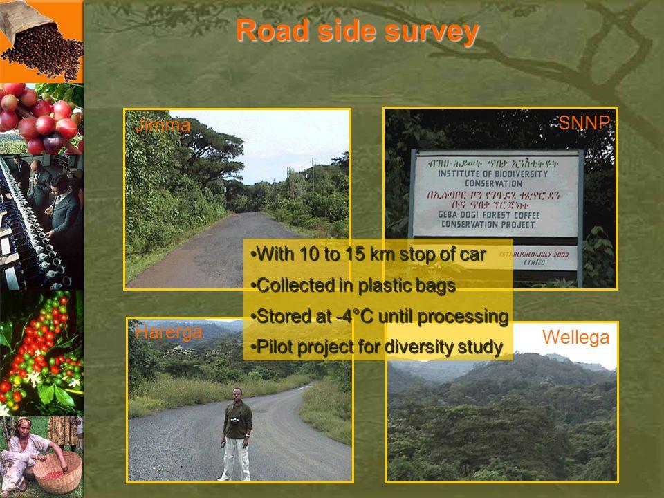 Road side survey Jimma Harerga SNNP Wellega With 10 to 15 km stop of carWith 10 to 15 km stop of car Collected in plastic bagsCollected in plastic bag