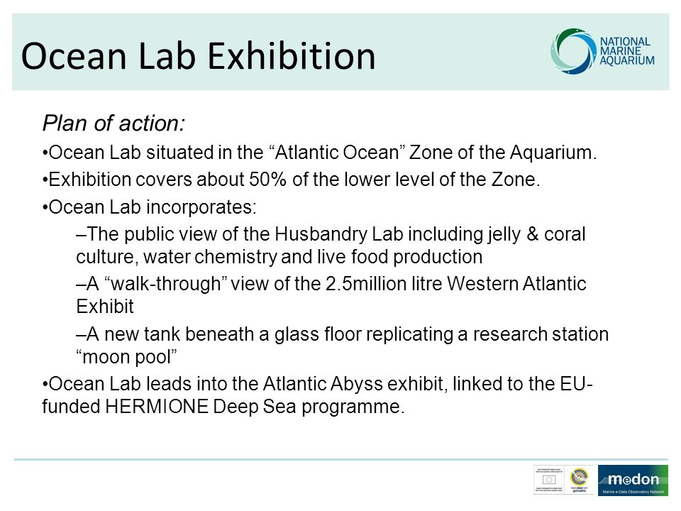 Ocean Lab Exhibition Plan of action: Ocean Lab situated in the Atlantic Ocean Zone of the Aquarium. Exhibition covers about 50% of the lower level of