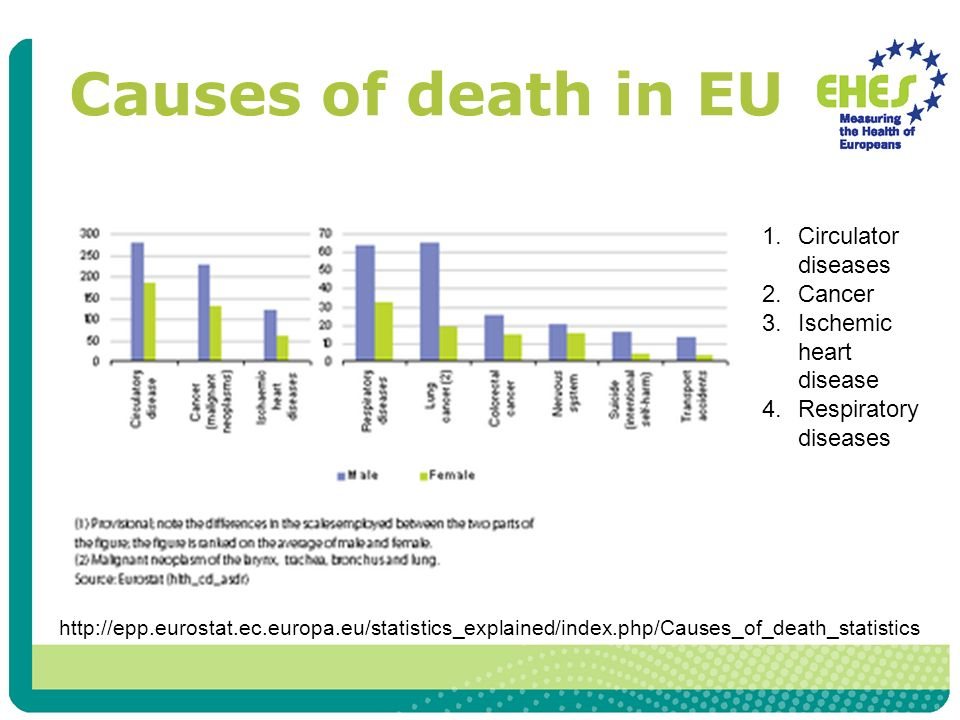 Causes of death in EU 1.Circulator diseases 2.Cancer 3.Ischemic heart disease 4.Respiratory diseases http://epp.eurostat.ec.europa.eu/statistics_explained/index.php/Causes_of_death_statistics