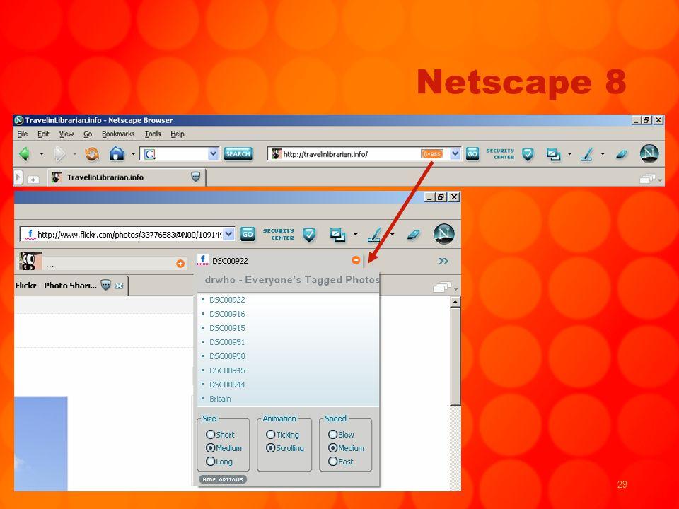 29 Netscape 8