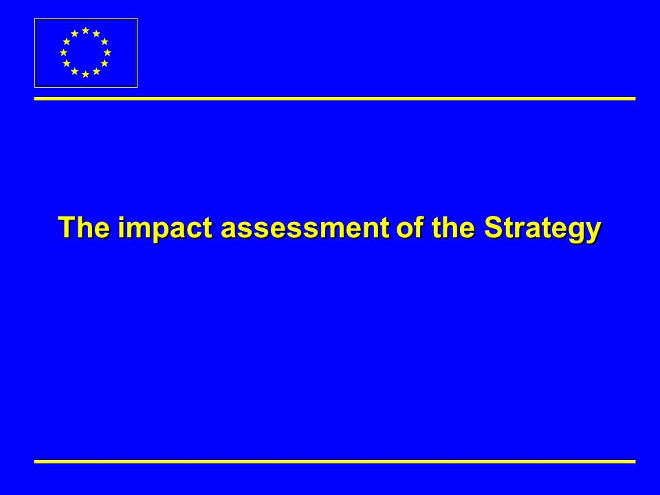 The impact assessment of the Strategy