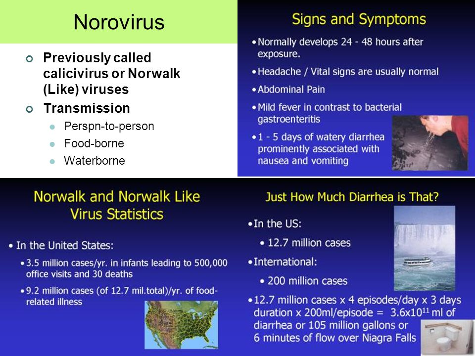 NOROVIRUS Norovirus Previously called calicivirus or Norwalk (Like) viruses Transmission Perspn-to-person Food-borne Waterborne