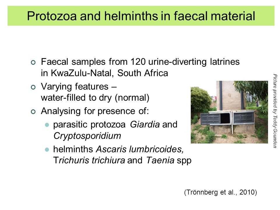 Faecal samples from 120 urine-diverting latrines in KwaZulu-Natal, South Africa Varying features – water-filled to dry (normal) Analysing for presence of: parasitic protozoa Giardia and Cryptosporidium helminths Ascaris lumbricoides, Trichuris trichiura and Taenia spp (Trönnberg et al., 2010) Picture provided by Teddy Gounden Protozoa and helminths in faecal material
