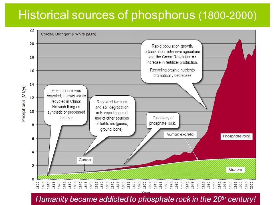 Humanity became addicted to phosphate rock in the 20 th century! Most manure was recycled; Human waste recycled in China; No such thing as synthetic o
