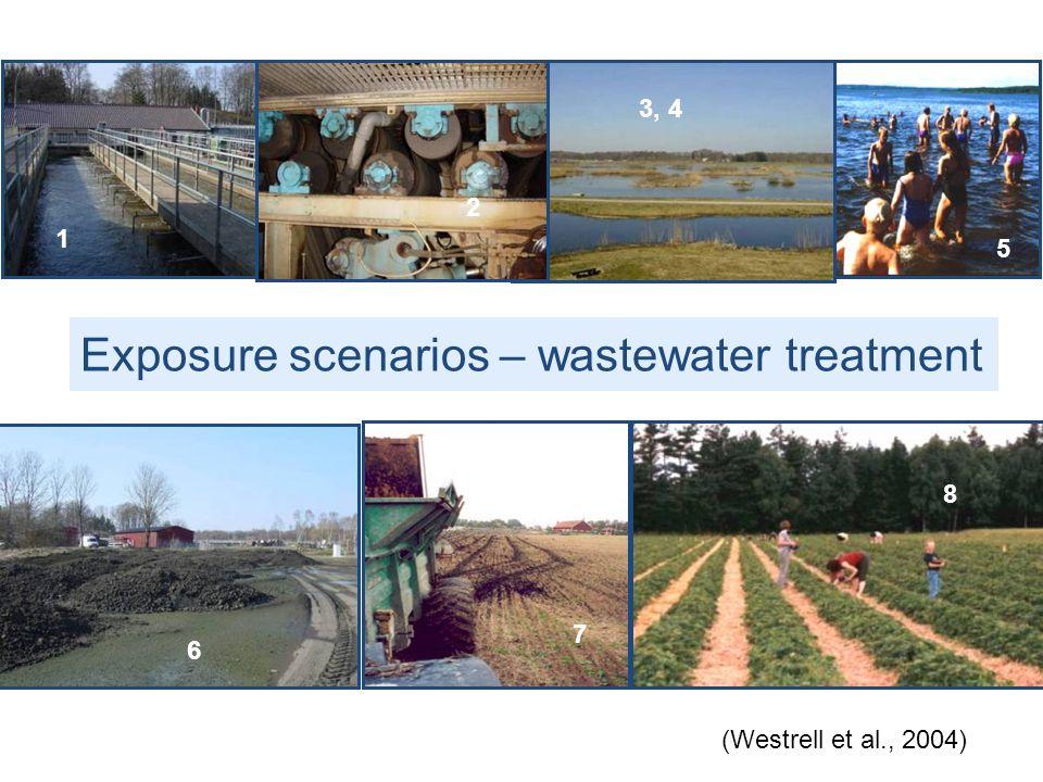 Exposure scenarios – wastewater treatment 1 2 3, 4 5 6 7 8 (Westrell et al., 2004)