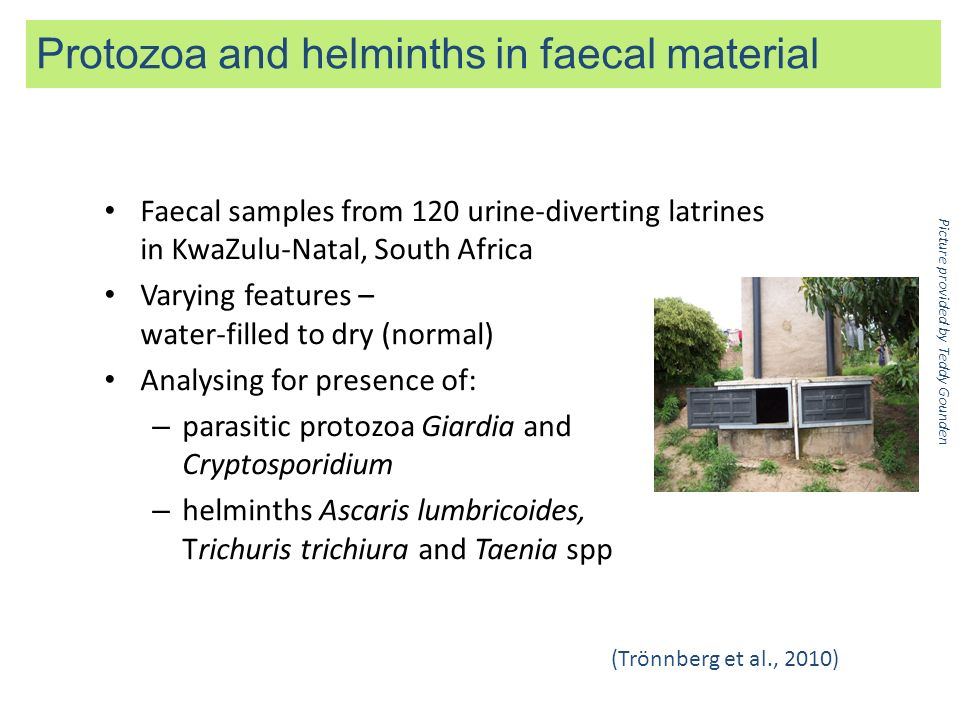 Faecal samples from 120 urine-diverting latrines in KwaZulu-Natal, South Africa Varying features – water-filled to dry (normal) Analysing for presence