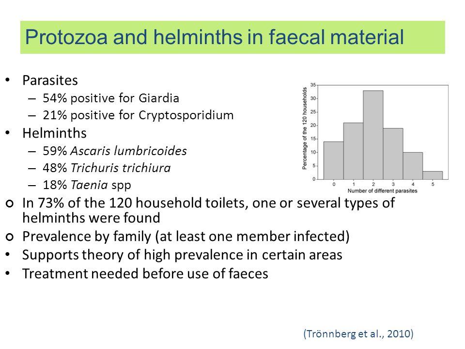 Parasites – 54% positive for Giardia – 21% positive for Cryptosporidium Helminths – 59% Ascaris lumbricoides – 48% Trichuris trichiura – 18% Taenia sp
