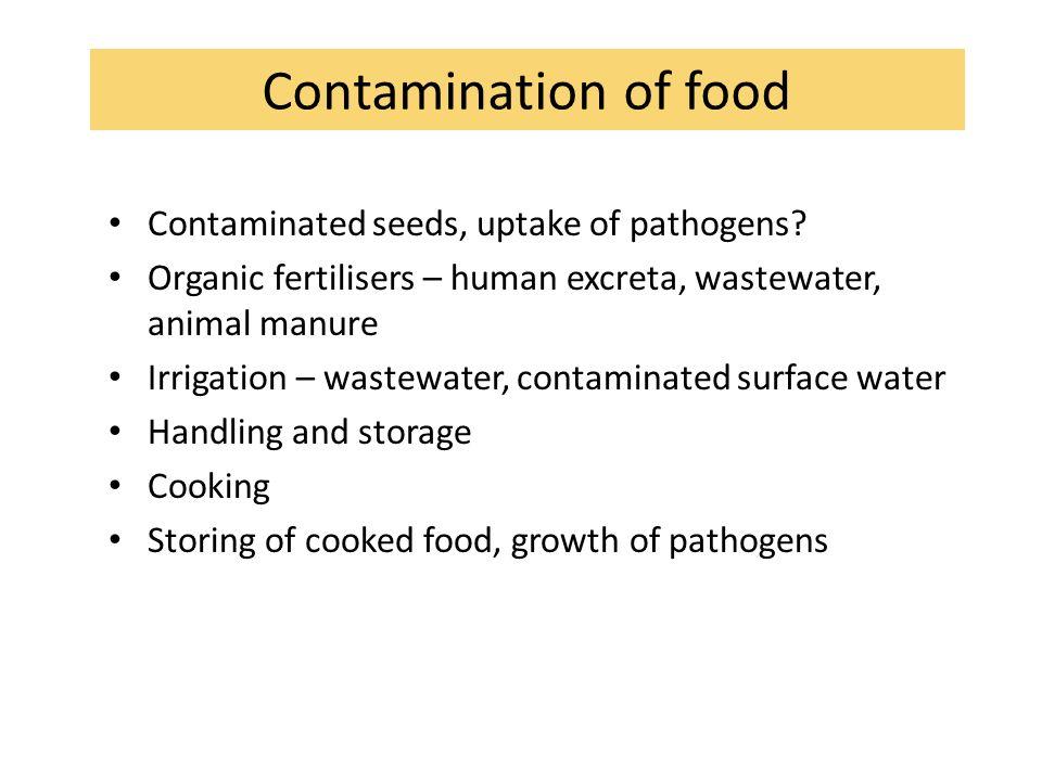 Contamination of food Contaminated seeds, uptake of pathogens? Organic fertilisers – human excreta, wastewater, animal manure Irrigation – wastewater,