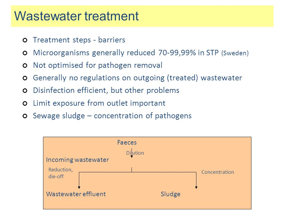 Incoming wastewater Wastewater effluent Sludge Reduction, die-off Concentration Dilution Wastewater treatment Faeces Treatment steps - barriers Microo