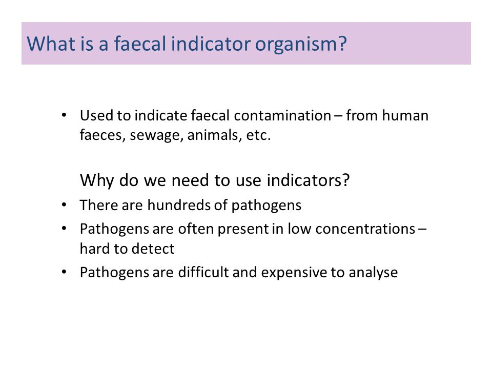 Used to indicate faecal contamination – from human faeces, sewage, animals, etc. Why do we need to use indicators? There are hundreds of pathogens Pat