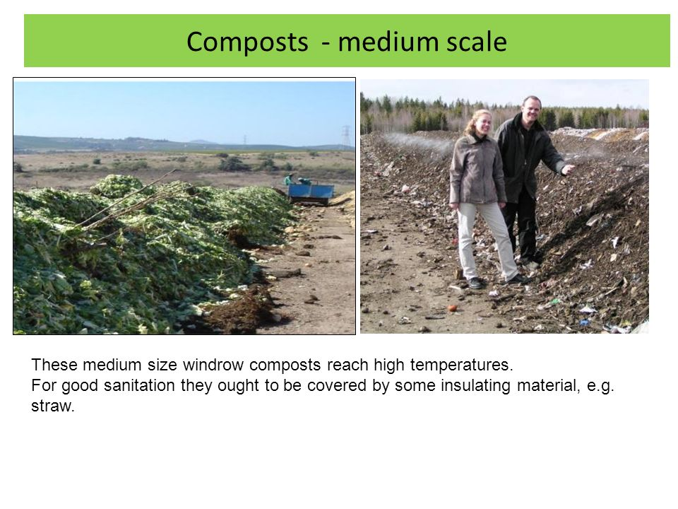 Composts - medium scale These medium size windrow composts reach high temperatures.