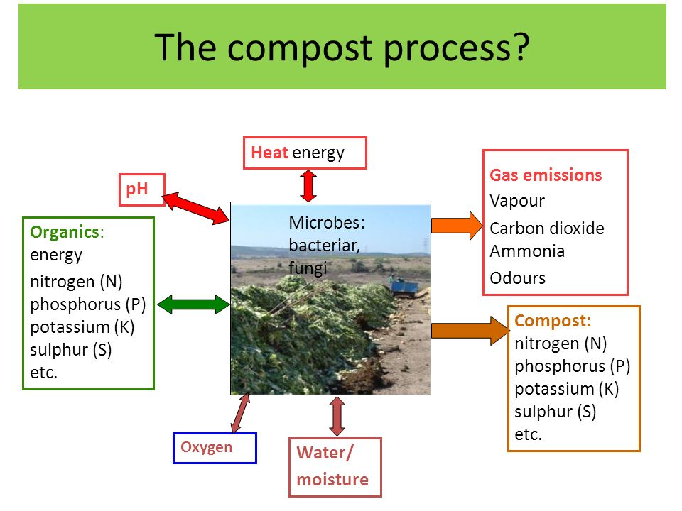 The compost process. Organics: energy nitrogen (N) phosphorus (P) potassium (K) sulphur (S) etc.