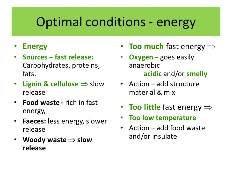 Optimal conditions - energy Energy Sources – fast release: Carbohydrates, proteins, fats.