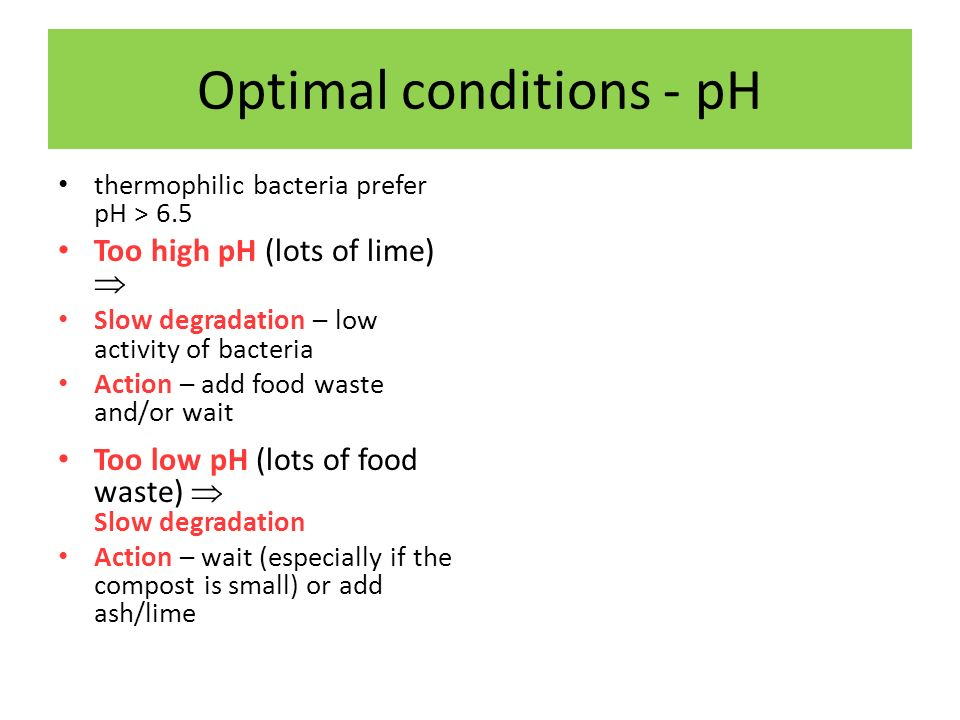 Optimal conditions - pH thermophilic bacteria prefer pH > 6.5 Too high pH (lots of lime) Slow degradation – low activity of bacteria Action – add food waste and/or wait Too low pH (lots of food waste) Slow degradation Action – wait (especially if the compost is small) or add ash/lime