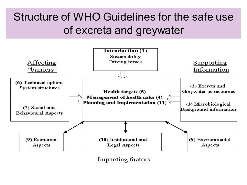 Structure of WHO Guidelines for the safe use of excreta and greywater