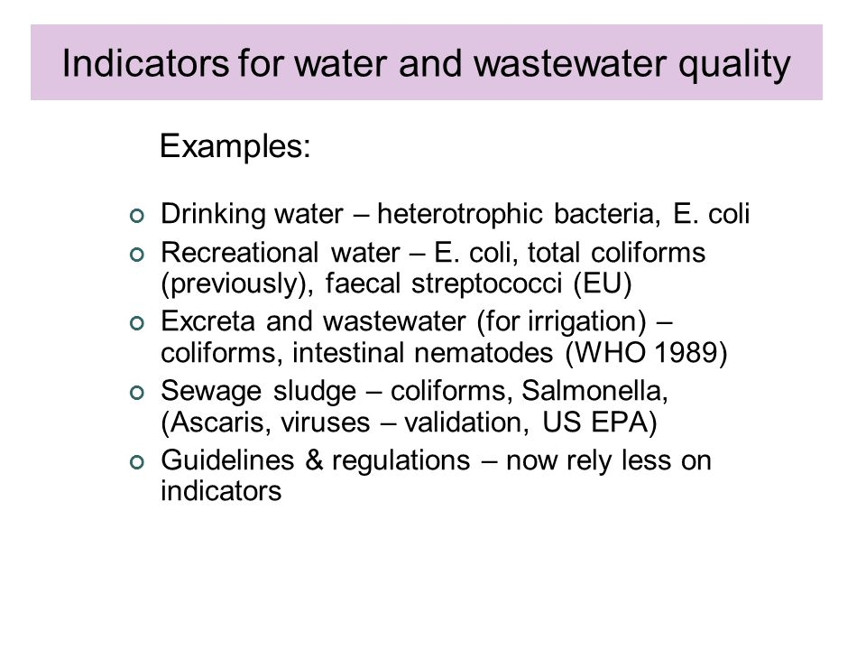 Drinking water – heterotrophic bacteria, E. coli Recreational water – E.