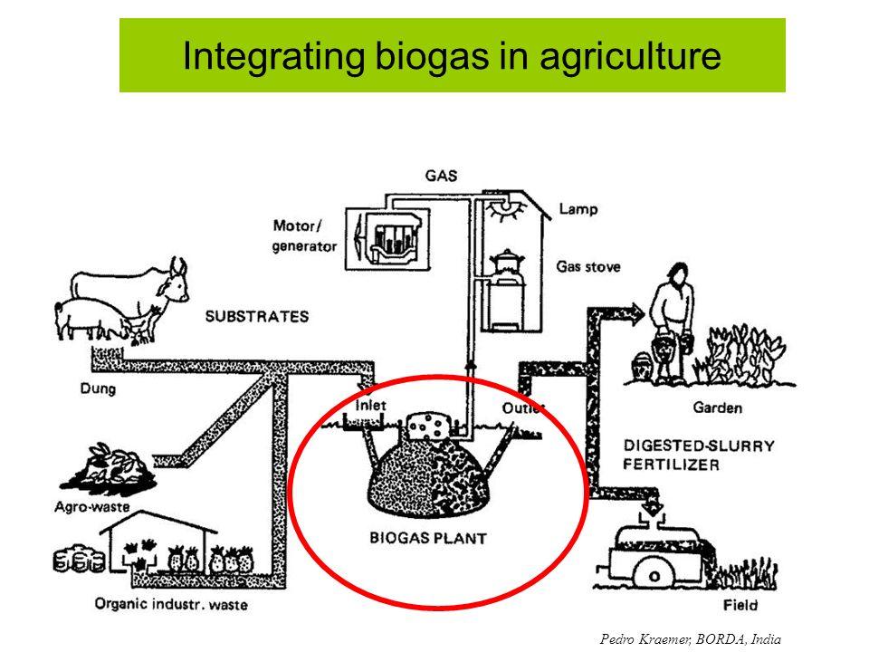 Integrating biogas in agriculture Pedro Kraemer, BORDA, India