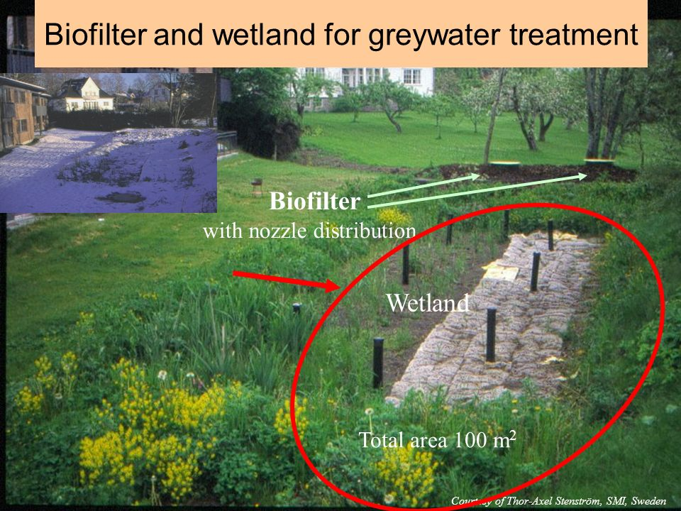 Biofilter with nozzle distribution Wetland Total area 100 m 2 Courtesy of Thor-Axel Stenström, SMI, Sweden Biofilter and wetland for greywater treatme