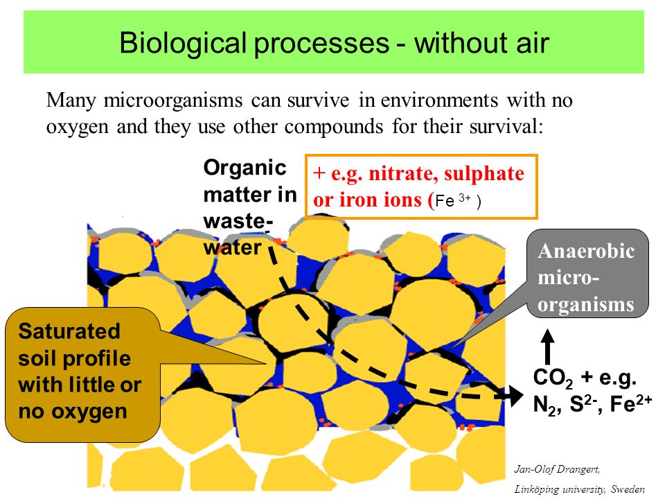 Biological processes - without air Many microorganisms can survive in environments with no oxygen and they use other compounds for their survival: + e