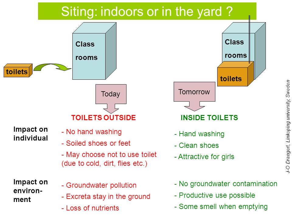 Siting: indoors or in the yard .