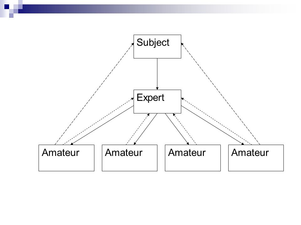 Subject Expert Amateur