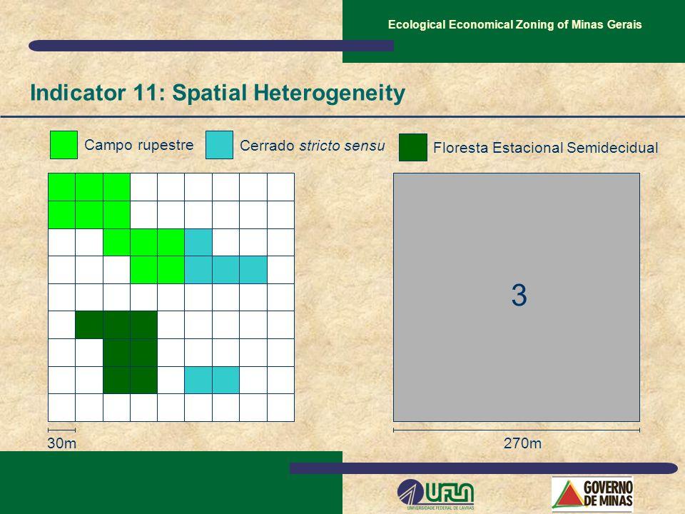 30m 3 270m Campo rupestre Cerrado stricto sensu Floresta Estacional Semidecidual Indicator 11: Spatial Heterogeneity