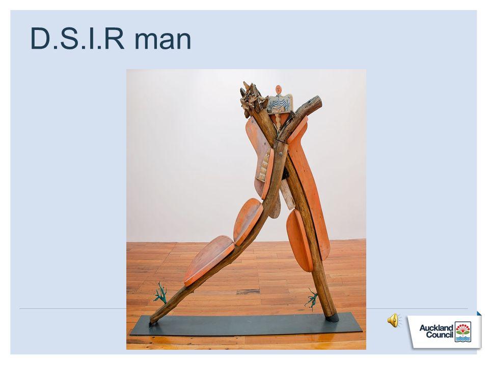 D.S.I.R man