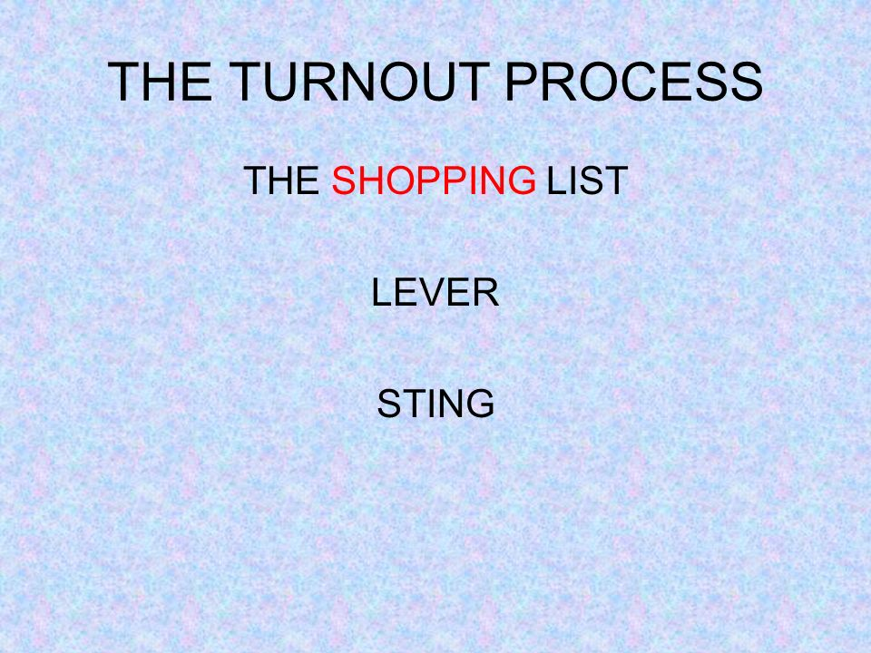 THE TURNOUT PROCESS THE SHOPPING LIST LEVER STING