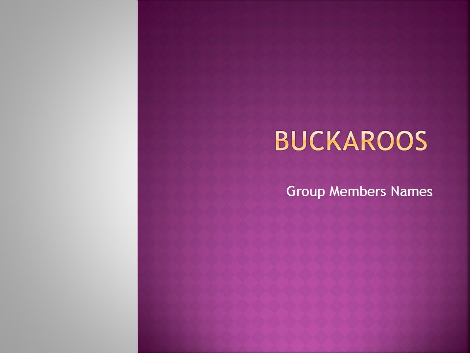 Group Members Names