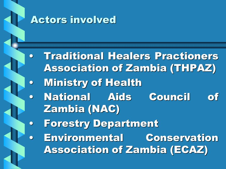 Actors involved Traditional Healers Practioners Association of Zambia (THPAZ)Traditional Healers Practioners Association of Zambia (THPAZ) Ministry of