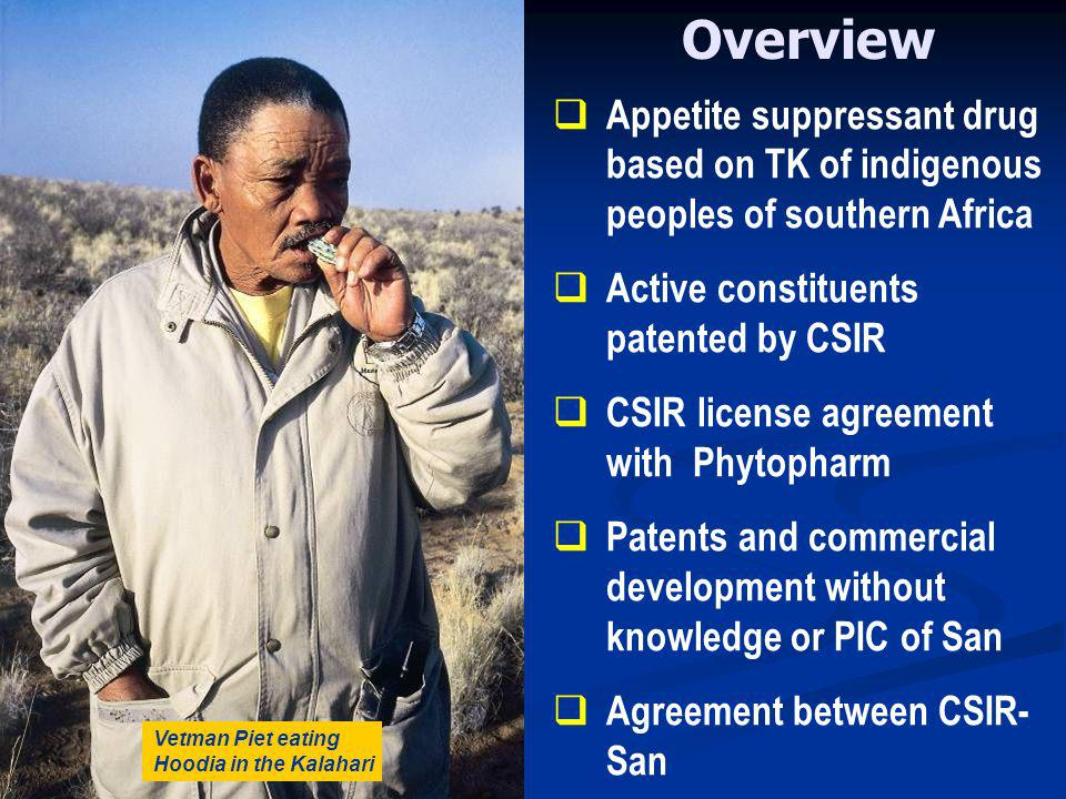 Overview Appetite suppressant drug based on TK of indigenous peoples of southern Africa Active constituents patented by CSIR CSIR license agreement with Phytopharm Patents and commercial development without knowledge or PIC of San Agreement between CSIR- San Vetman Piet eating Hoodia in the Kalahari