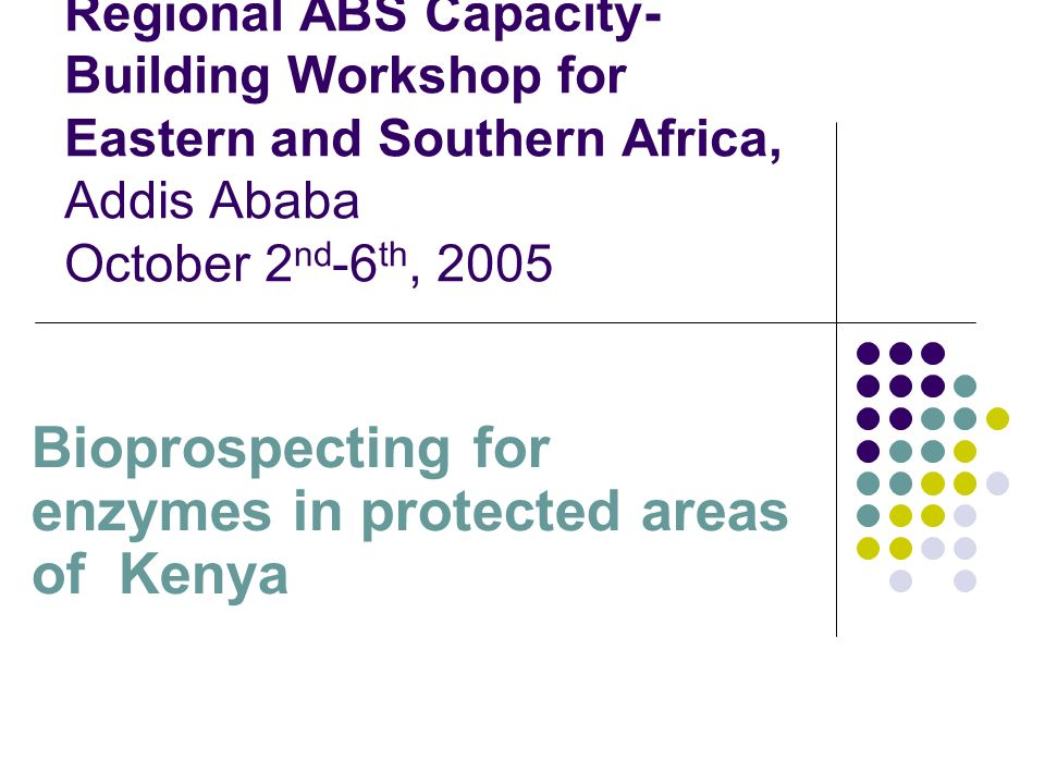Regional ABS Capacity- Building Workshop for Eastern and Southern Africa, Addis Ababa October 2 nd -6 th, 2005 Bioprospecting for enzymes in protected
