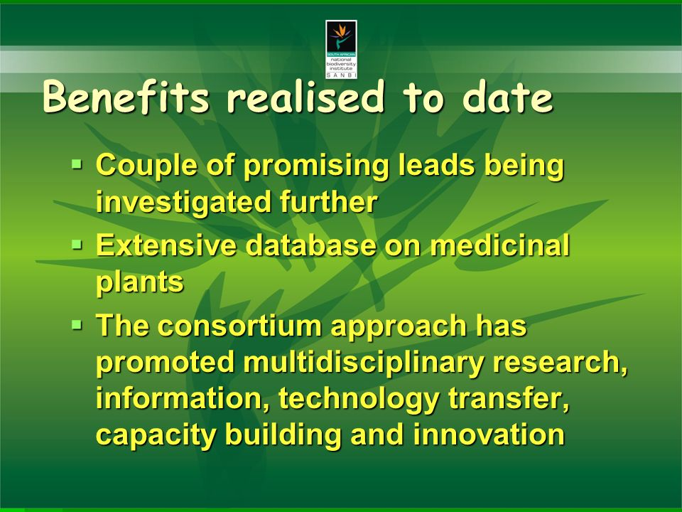 Benefits realised to date Couple of promising leads being investigated further Couple of promising leads being investigated further Extensive database on medicinal plants Extensive database on medicinal plants The consortium approach has promoted multidisciplinary research, information, technology transfer, capacity building and innovation The consortium approach has promoted multidisciplinary research, information, technology transfer, capacity building and innovation