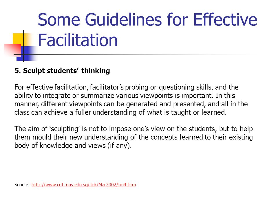 Some Guidelines for Effective Facilitation Source: http://www.cdtl.nus.edu.sg/link/Mar2002/tm4.htmhttp://www.cdtl.nus.edu.sg/link/Mar2002/tm4.htm 5.