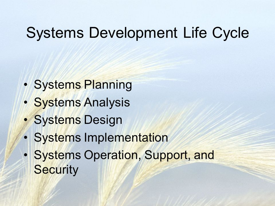 Systems Planning Involve the online faculty throughout the development process Listen to the online facultys needs for student proficiency in BB Keep the project flexible and modular Develop accurate information Allow access from home or school, broadband or dial-up