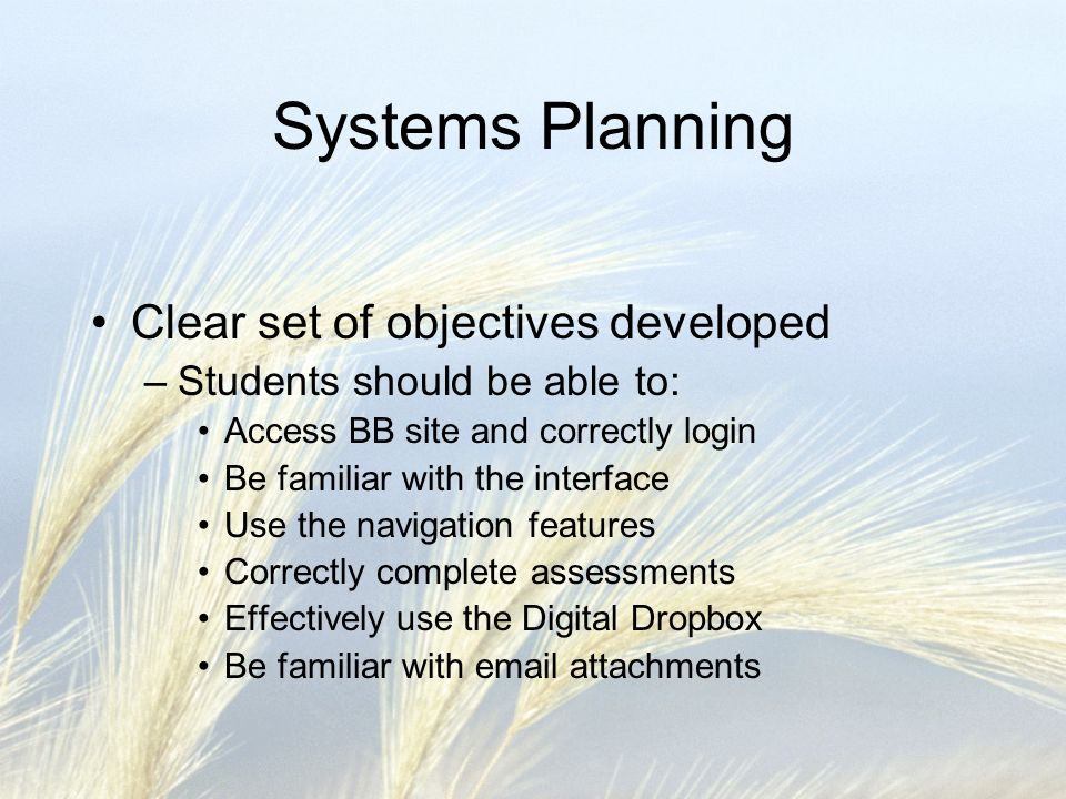 Systems Planning Clear set of objectives developed –Students should be able to: Access BB site and correctly login Be familiar with the interface Use the navigation features Correctly complete assessments Effectively use the Digital Dropbox Be familiar with email attachments