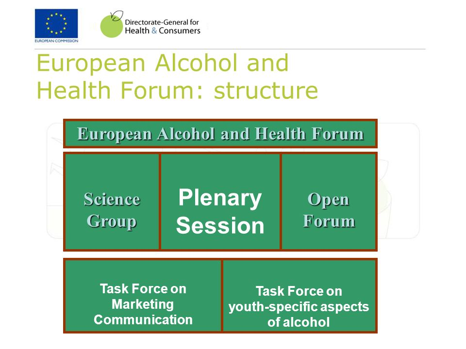 European Alcohol and Health Forum: structure Plenary Session European Alcohol and Health Forum Open Forum Science Group Task Force on youth-specific aspects of alcohol Task Force on Marketing Communication