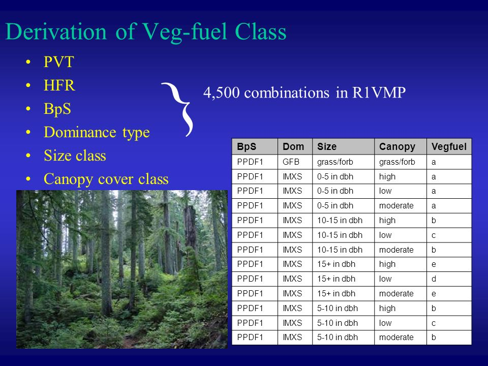 Derivation of Veg-fuel Class PVT HFR BpS Dominance type Size class Canopy cover class BpSDomSizeCanopyVegfuel PPDF1GFBgrass/forb a PPDF1IMXS0-5 in dbhhigha PPDF1IMXS0-5 in dbhlowa PPDF1IMXS0-5 in dbhmoderatea PPDF1IMXS10-15 in dbhhighb PPDF1IMXS10-15 in dbhlowc PPDF1IMXS10-15 in dbhmoderateb PPDF1IMXS15+ in dbhhighe PPDF1IMXS15+ in dbhlowd PPDF1IMXS15+ in dbhmoderatee PPDF1IMXS5-10 in dbhhighb PPDF1IMXS5-10 in dbhlowc PPDF1IMXS5-10 in dbhmoderateb } 4,500 combinations in R1VMP
