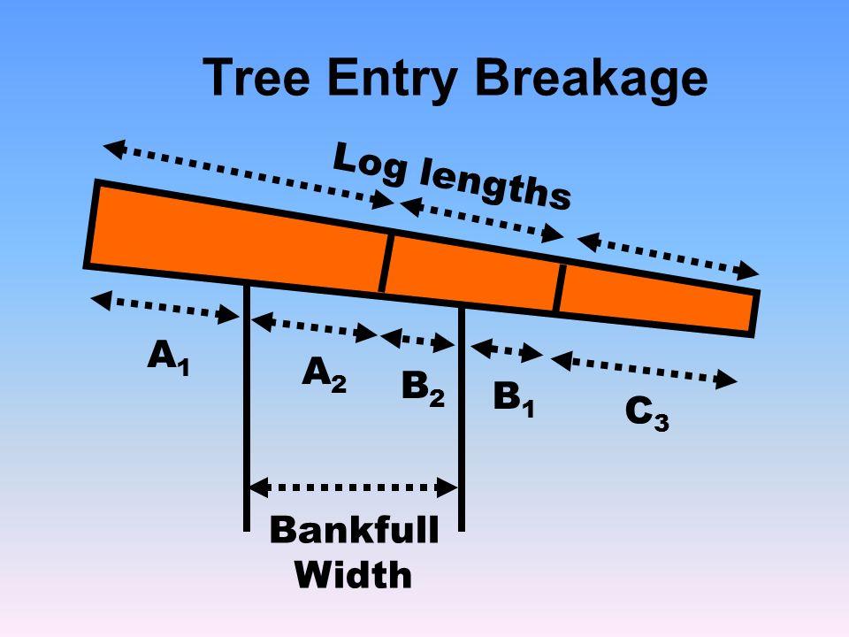 Tree Entry Breakage Bankfull Width A1A1 Log lengths C3C3 A2A2 B2B2 B1B1