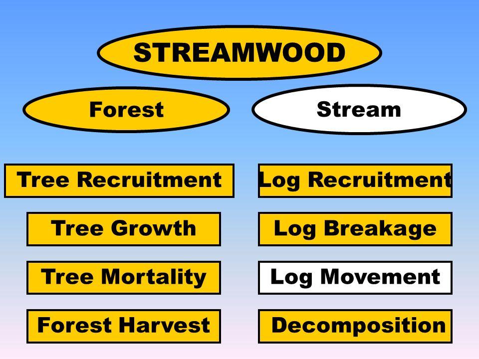 STREAMWOOD Tree Recruitment Tree Growth Tree Mortality Log Recruitment Log Breakage Log Movement DecompositionForest Harvest Forest Stream