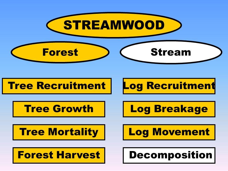 STREAMWOOD Tree Growth Tree Mortality Log Recruitment Log Breakage Log Movement DecompositionForest Harvest Forest Stream Tree Recruitment