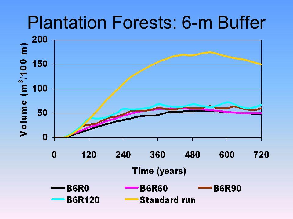 Plantation Forests: 6-m Buffer