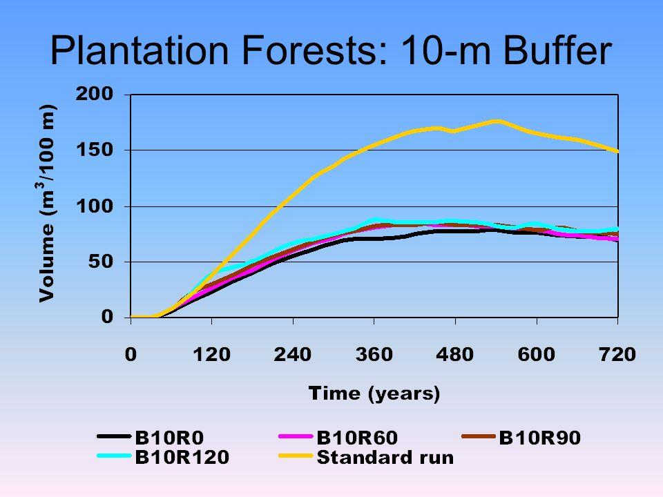 Plantation Forests: 10-m Buffer