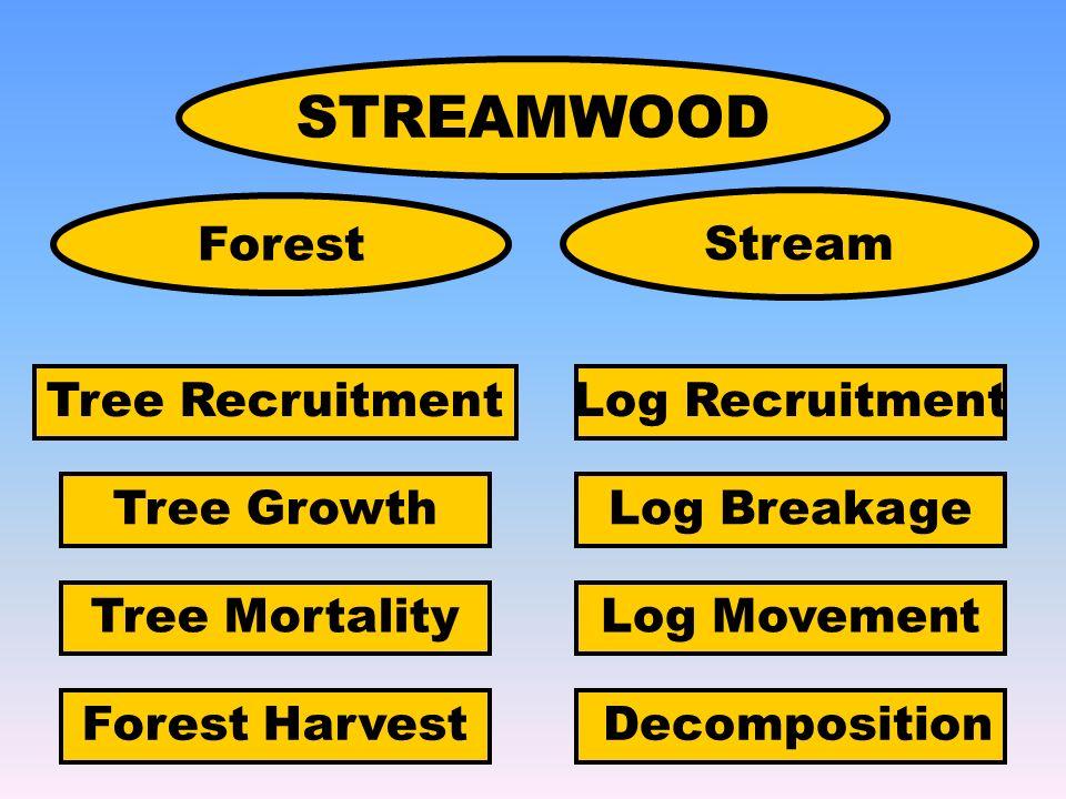 STREAMWOOD Forest Stream Tree Recruitment Tree Growth Tree Mortality Log Recruitment Log Breakage Log Movement DecompositionForest Harvest