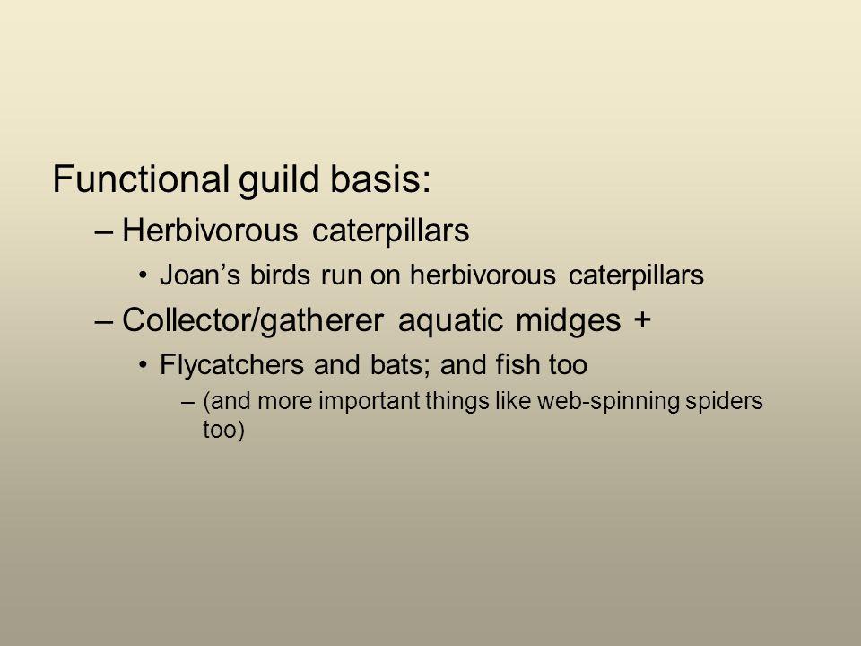 Functional guild basis: –Herbivorous caterpillars Joans birds run on herbivorous caterpillars –Collector/gatherer aquatic midges + Flycatchers and bat